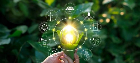 Welke ecologische termen zijn er en wat betekenen ze?